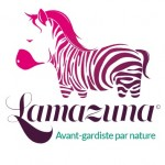 Lamazuna shampooing zéro déchet