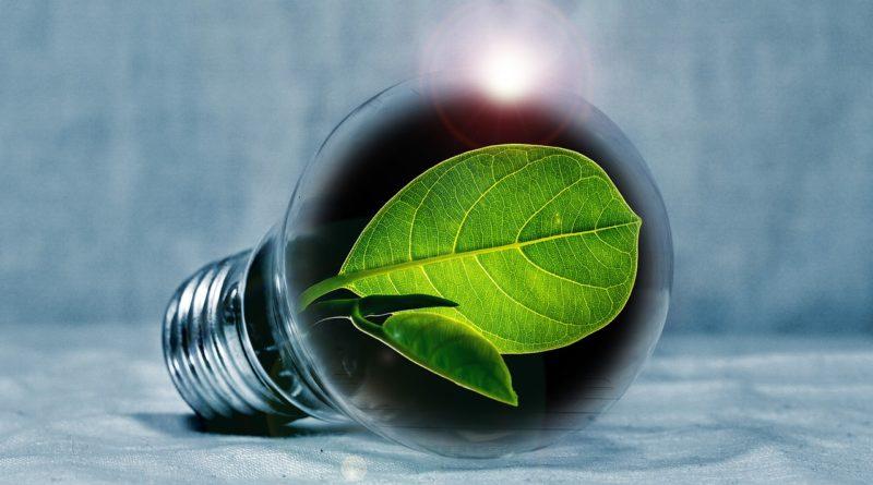 3 solutions pour une consommation électrique responsable